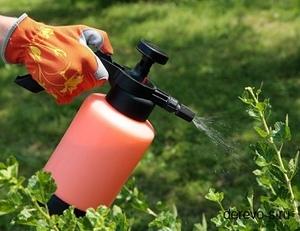 бордосская смесь жидкая инструкция по применению