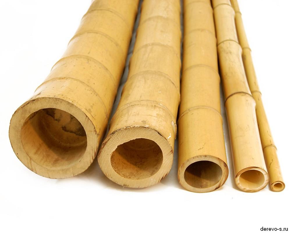 Бамбуковый паркет - отзывы и разбор технологии укладки