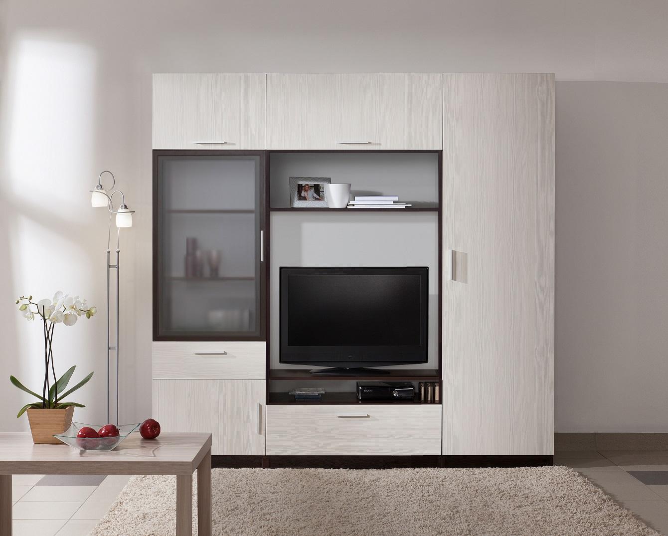 Шкаф в гостиную — обзор современных моделей и новинок дизайна. Примеры идеального размещения в интерьере
